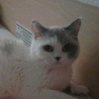 Profilbild von Lilly