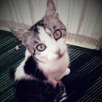 Profilbild von Anni