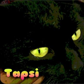 Profilbild von Tapsi