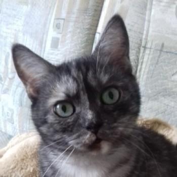 Profilbild von † Paula