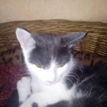Profilbild von Matilda