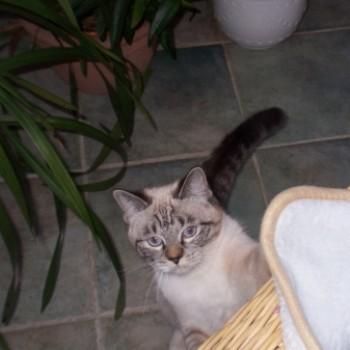 Profilbild von Sally
