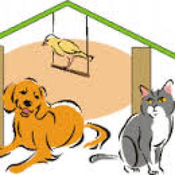 Gruppenlogo von wir helfen tierheim-katzen-tieren